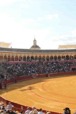 Dlaczego korrida wciąż cieszy się popularnością?